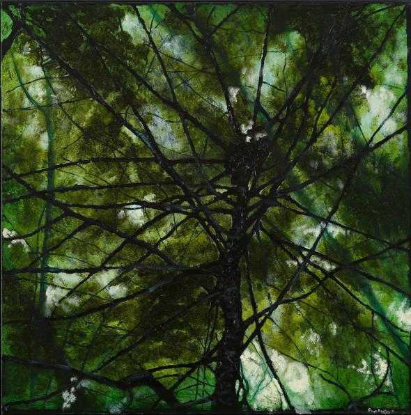 Oil on Canvas - 24 x 24