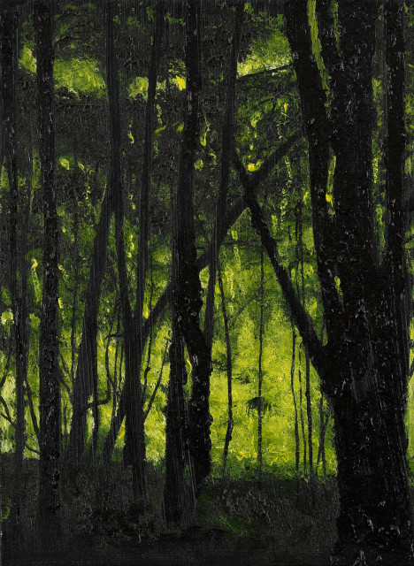 lincoln woods 6  thumb