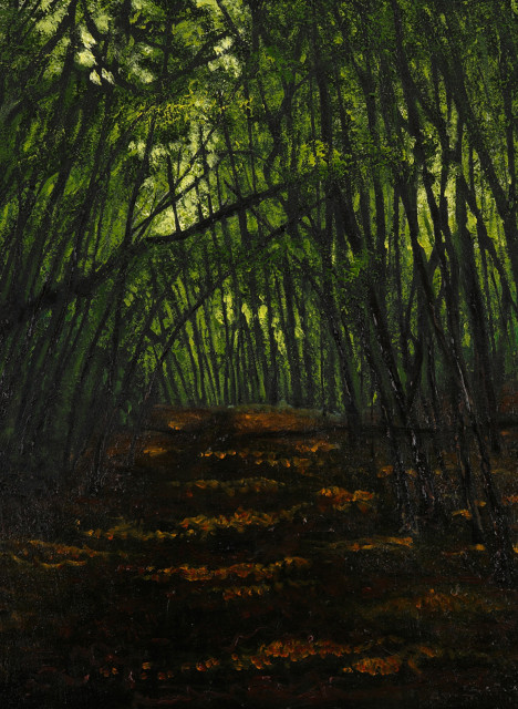 lincoln woods 7 thumb
