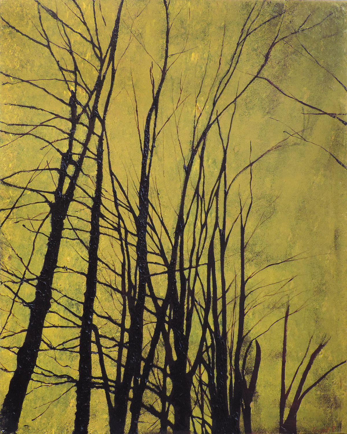 Lincoln Woods 17 - November - Oil on Canvas - 24 x 30